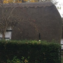 They have actual thatched roofs.